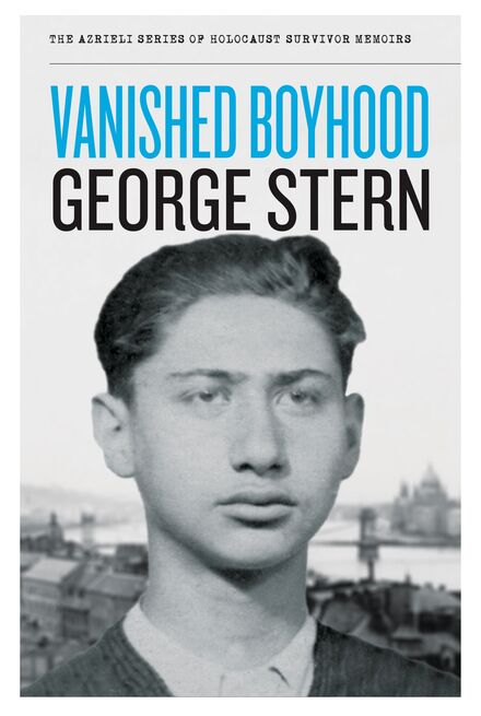 Book Cover of Vanished Boyhood