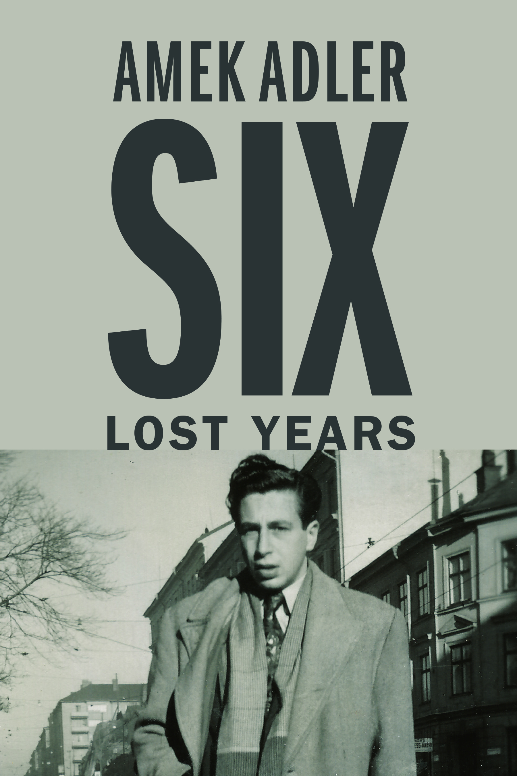 Six Lost Years book cover