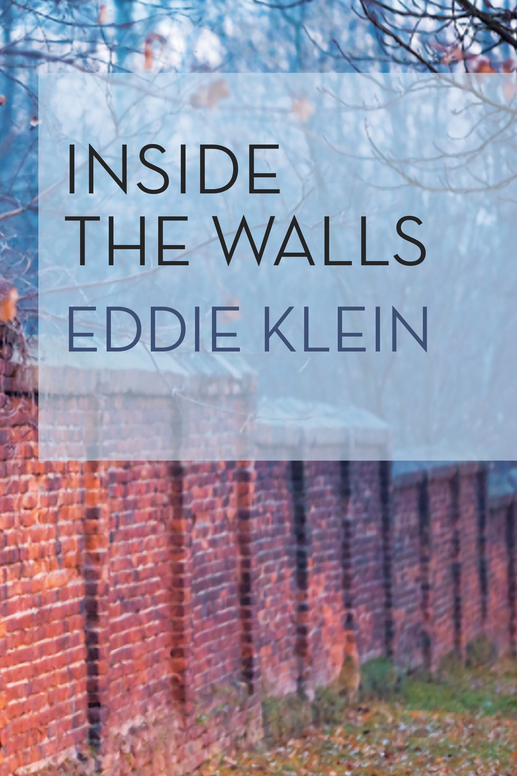 Cover of Inside the Walls (Traduction française à venir)