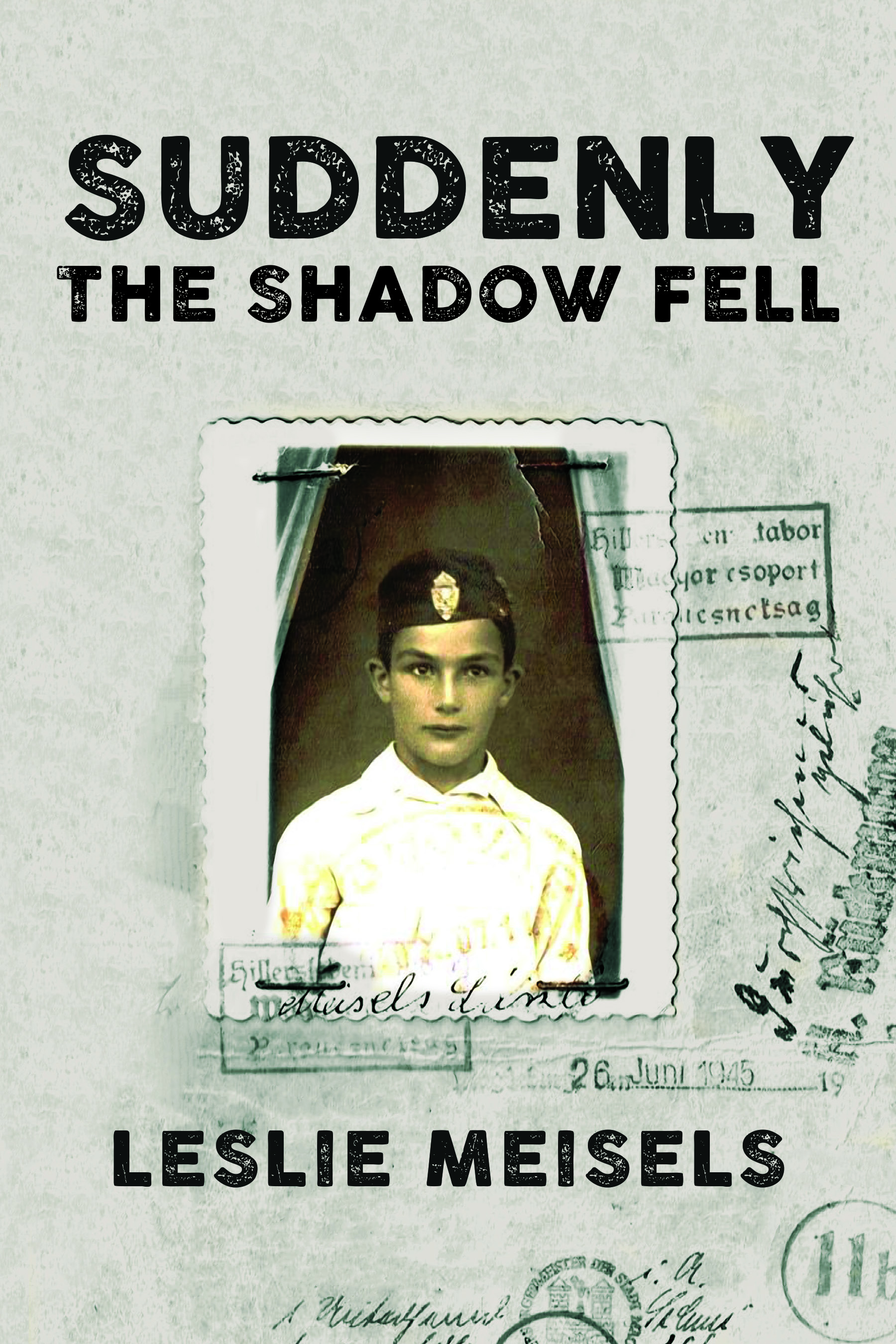 Suddenly the Shadow Fell book cover