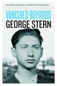 Cover of Vanished Boyhood