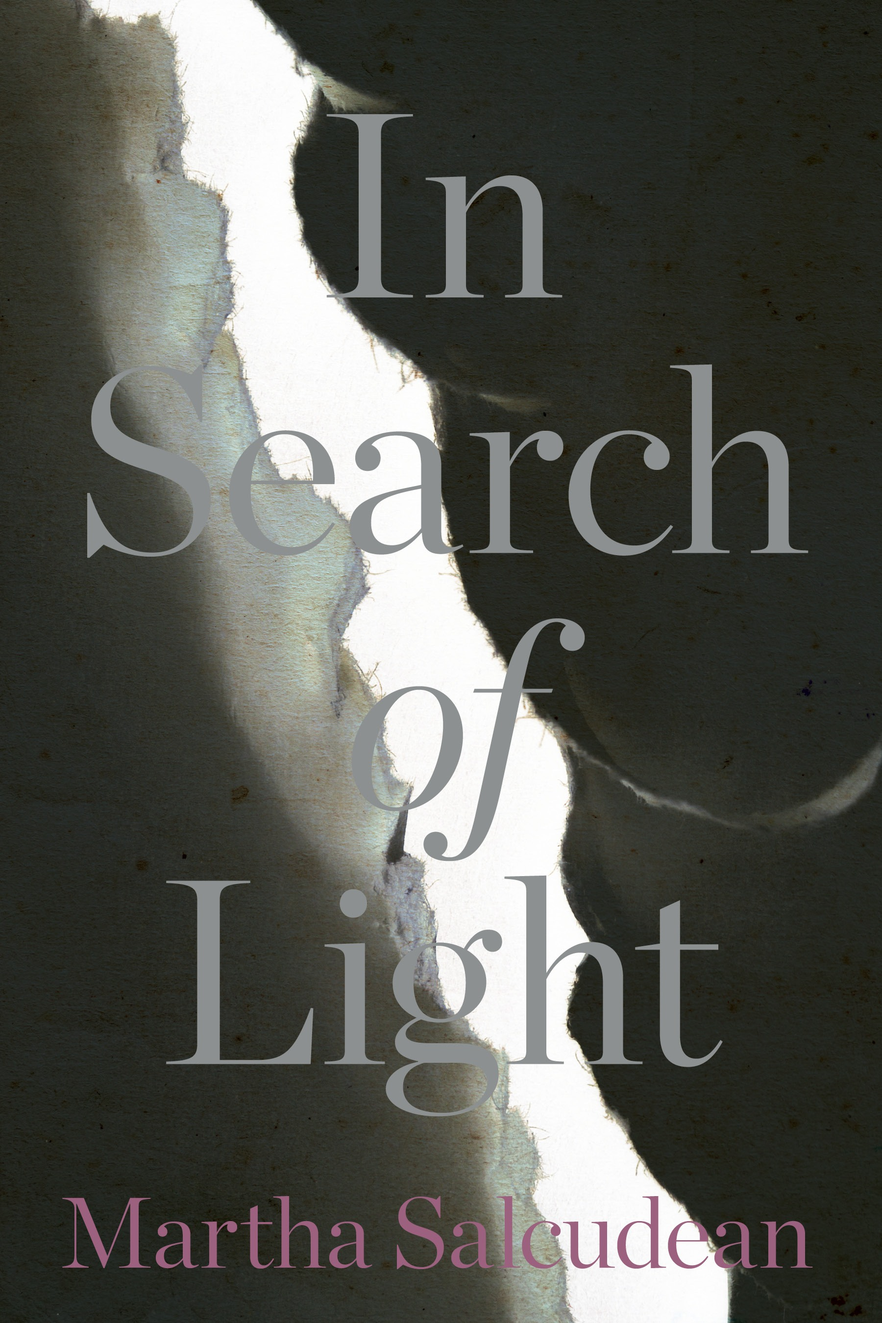 In Search of Light book cover