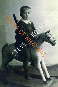 Cover of Traces of What Was