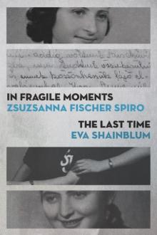 Cover of In Fragile Moments (Traduction française à venir)